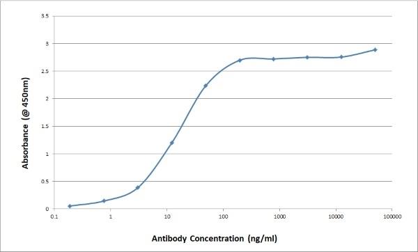 Anti Bovine/Ovine IgG/A/M Antibody, clone K67 3G2 thumbnail image 4