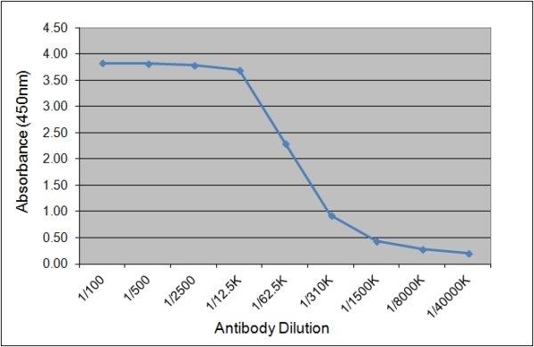 Anti Bovine IgG1 Antibody, clone K37 2G6 gallery image 1