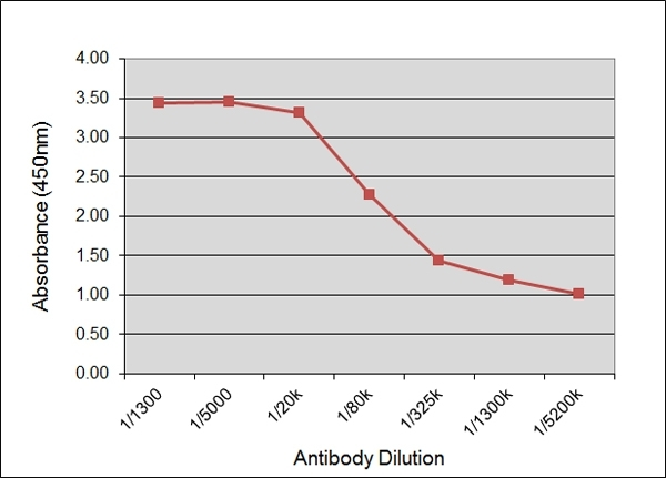 Anti Bovine IgG2 Antibody, clone IL-A73 gallery image 1