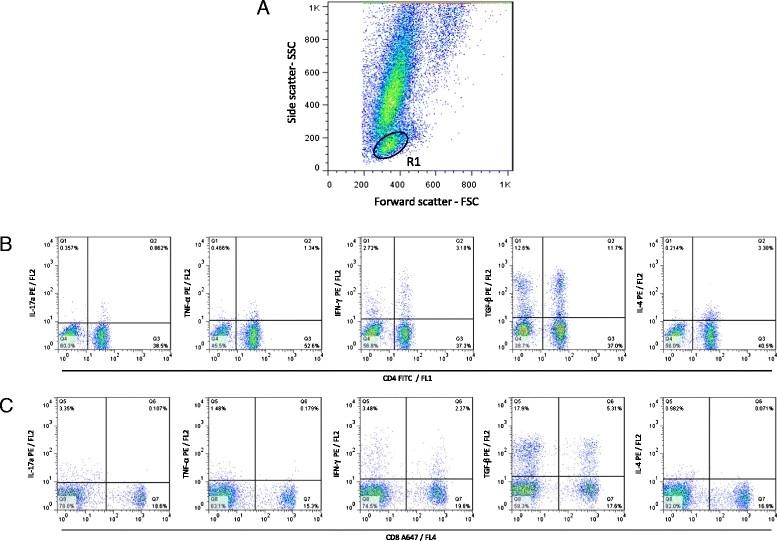 Anti Bovine Interleukin-4 Antibody, clone CC303 thumbnail image 1