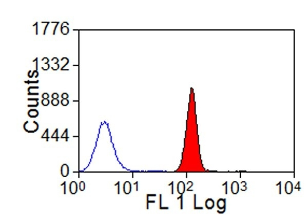 Anti Bovine MHC Class I Monomorphic Antibody, clone IL-A88 thumbnail image 2