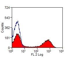 Anti Bovine MHC Class II DR Antibody, clone CC108 thumbnail image 3