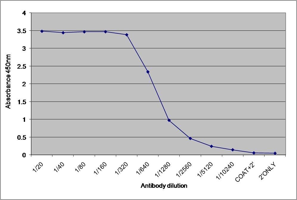 Anti Dehydroepiandrosterone Antibody, clone 1-7.1 (BGN/1177/171) gallery image 1