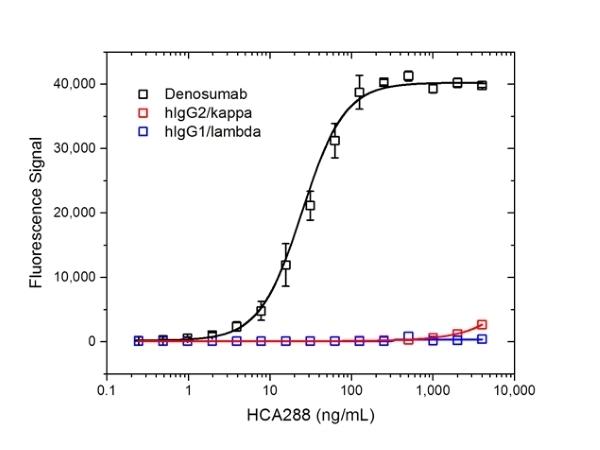 Anti Denosumab Antibody, clone AbD26296 thumbnail image 2