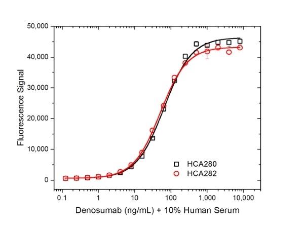 Anti Denosumab Antibody, clone AbD26781_hIgG1 thumbnail image 4