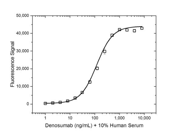 Anti Denosumab Antibody, clone AbD26781_hIgG1 thumbnail image 5