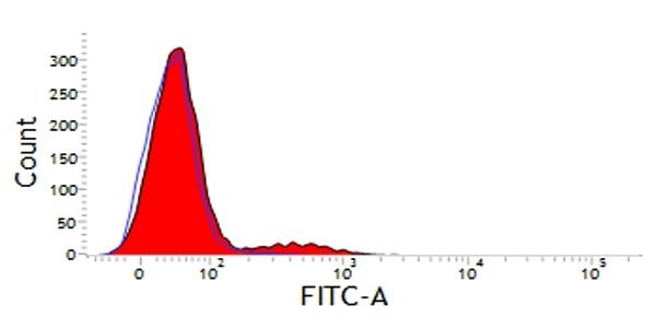 Anti Dog CD11d Antibody, clone CA11.8H2 thumbnail image 2