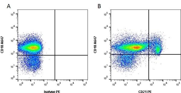 Anti Canine CD21 Antibody, clone CA2.1D6 thumbnail image 1