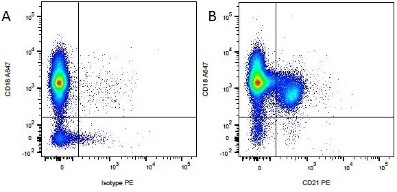 Anti Canine CD21 Antibody, clone CA2.1D6 thumbnail image 2