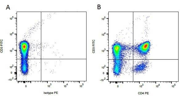 Anti Dog CD3 Antibody, clone CA17.2A12 thumbnail image 4