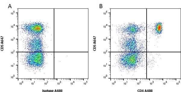 Anti Dog CD4 Antibody, clone YKIX302.9 thumbnail image 2