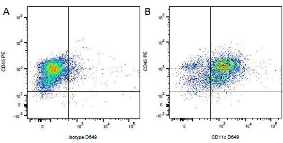 Anti Dog CD45 Antibody, clone YKIX716.13 thumbnail image 7