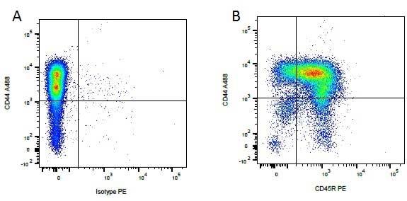 Anti Dog CD45R Antibody, clone YKIX753.22.2 thumbnail image 1