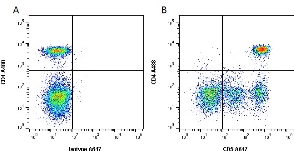 Anti Dog CD5 Antibody, clone YKIX322.3 thumbnail image 1