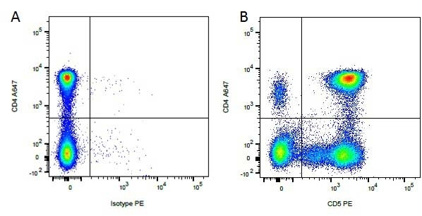 Anti Dog CD5 Antibody, clone YKIX322.3 thumbnail image 2