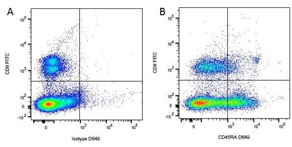 Anti Dog CD8 Antibody, clone YCATE55.9 thumbnail image 6