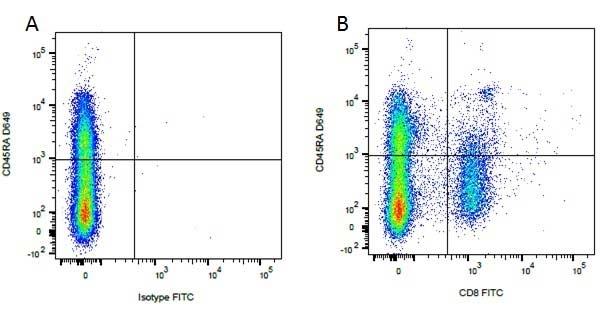 Anti Dog CD8 Antibody, clone YCATE55.9 thumbnail image 7