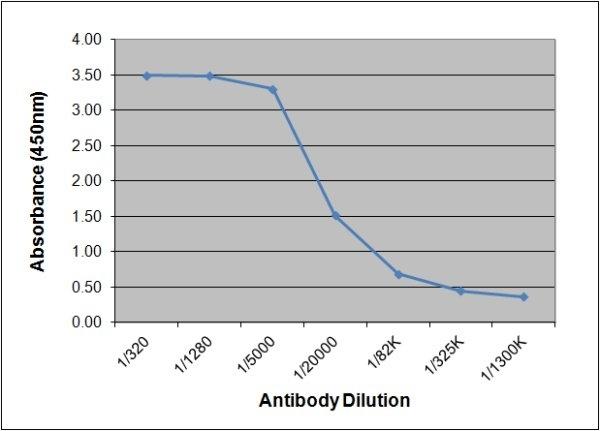 Anti Estriol Antibody, clone 143.9A12 gallery image 1