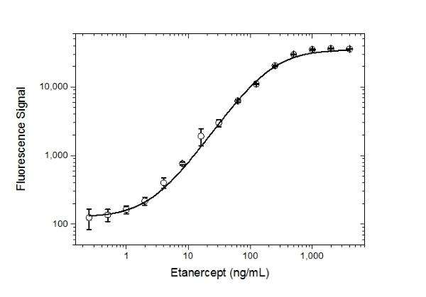 Anti Etanercept Antibody, clone AbD25939 thumbnail image 4