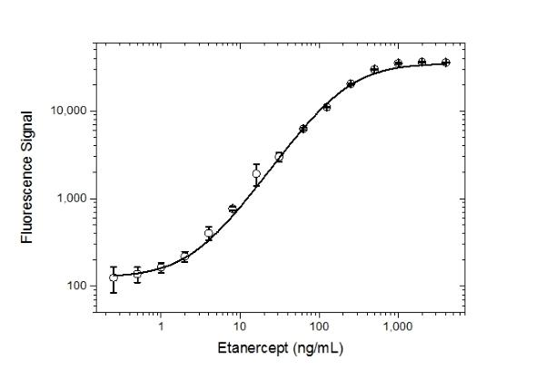 Anti Etanercept Antibody, clone AbD26183_hIgG1 thumbnail image 3