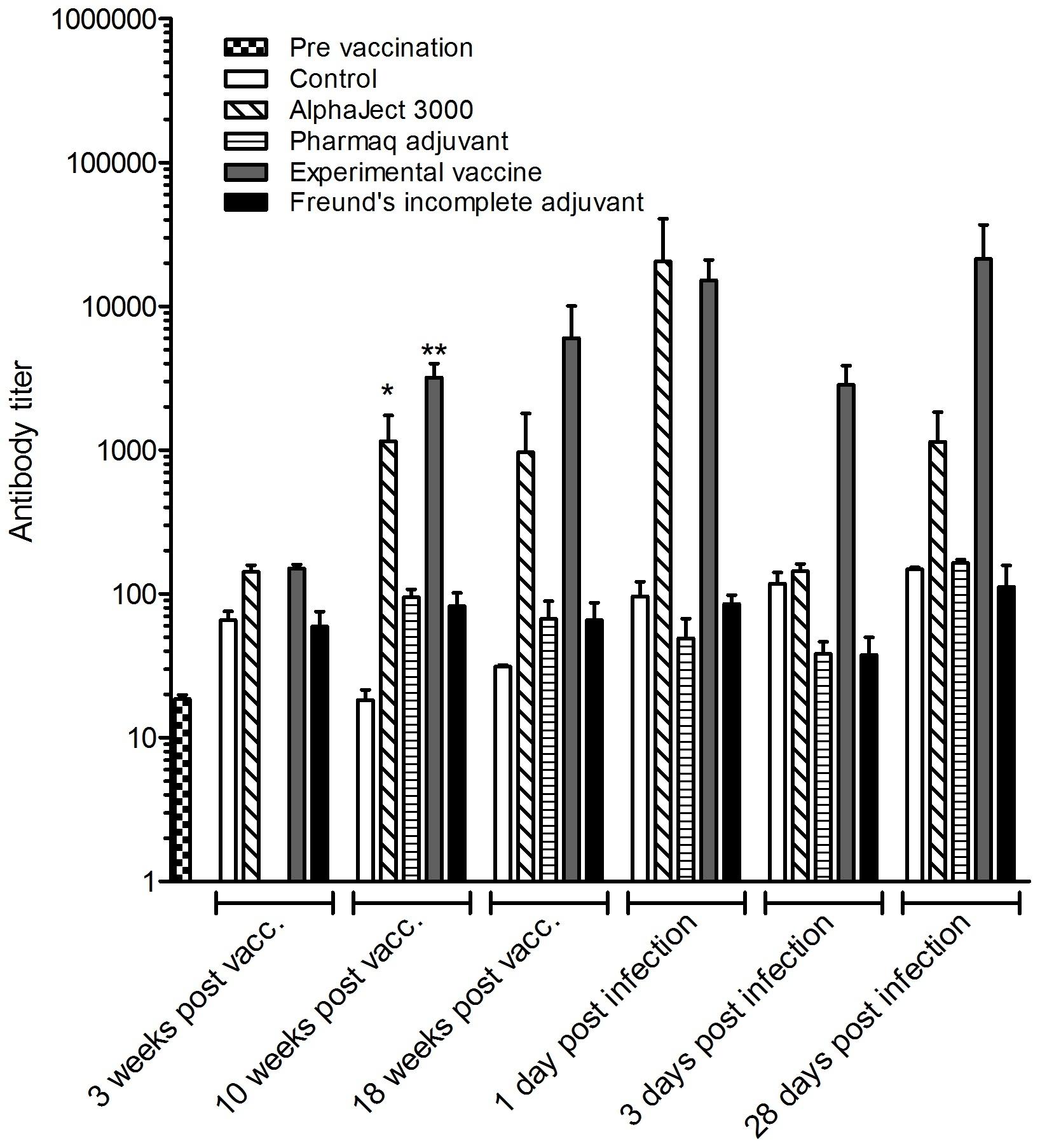 Anti Salmonid Ig Antibody, clone 5F12 thumbnail image 5