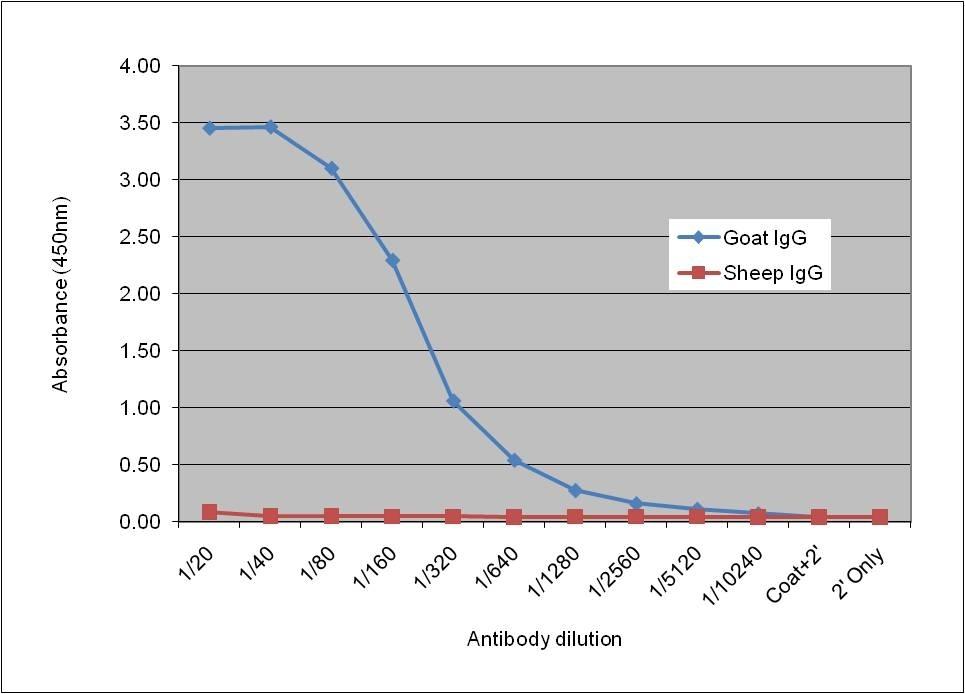 Anti Goat IgG Antibody, clone AbD09077 gallery image 1