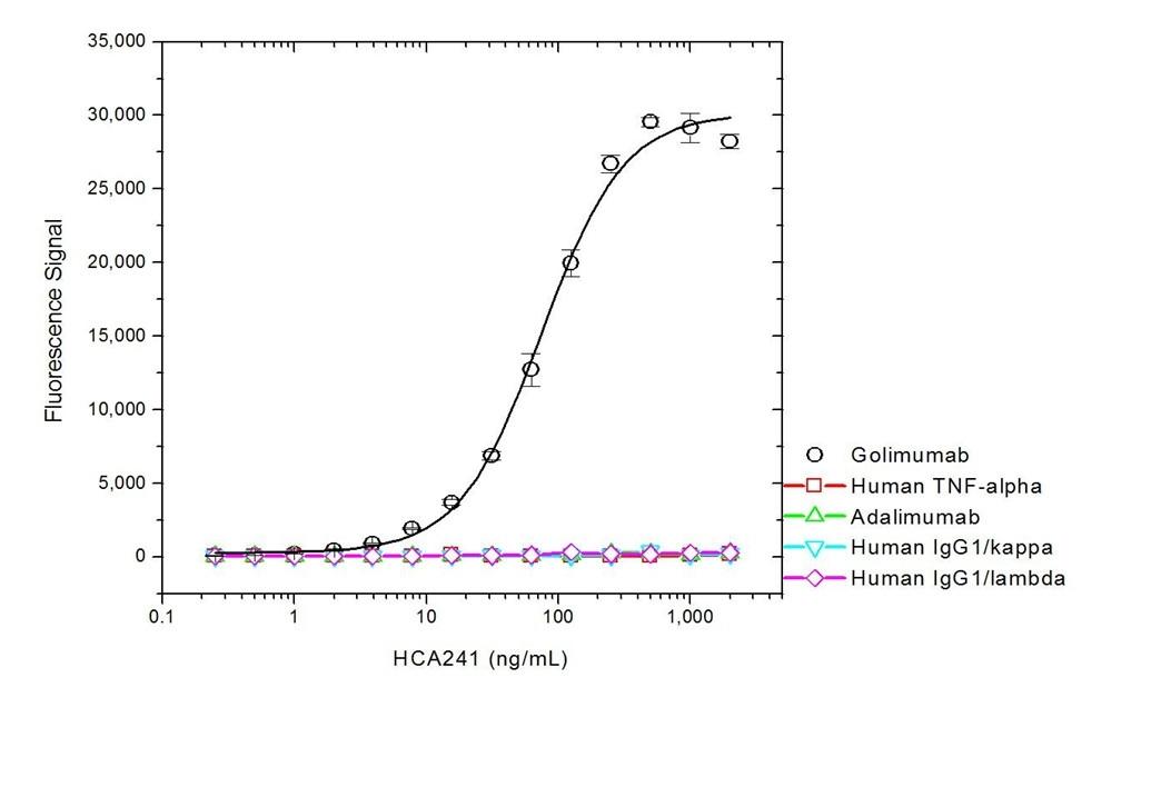 Anti Golimumab Antibody, clone AbD20692_hIgG1 thumbnail image 2