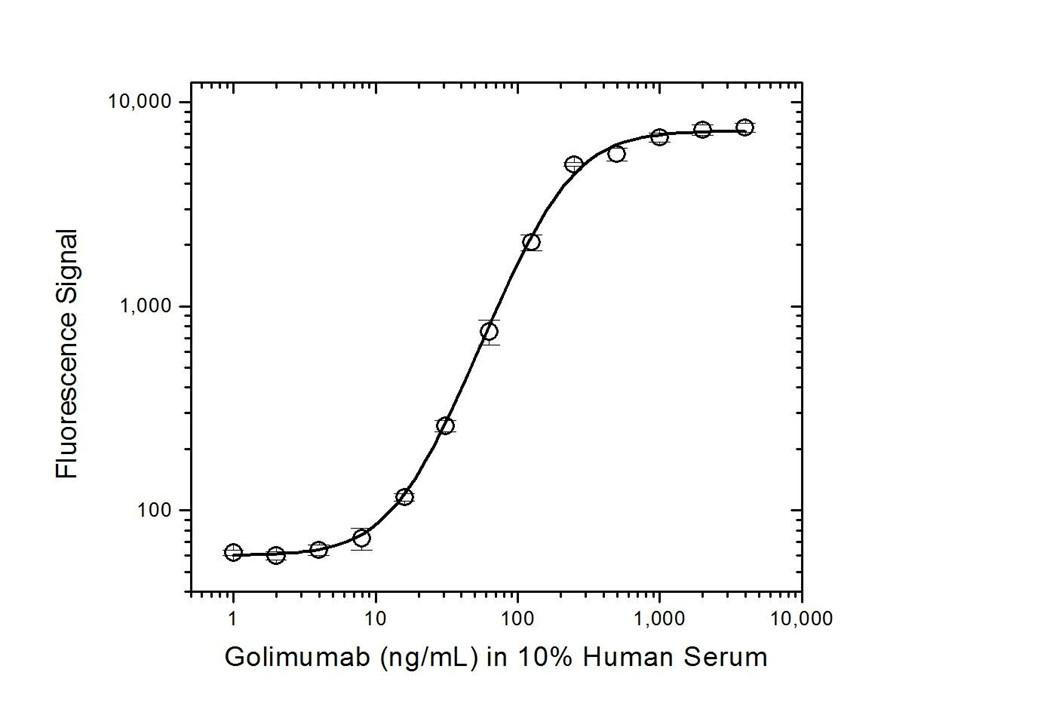 Anti Golimumab Antibody, clone AbD20710 thumbnail image 5