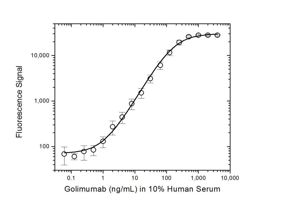 Anti Golimumab (Drug/Target Complex) Antibody, clone AbD20893_hIgG1 thumbnail image 3