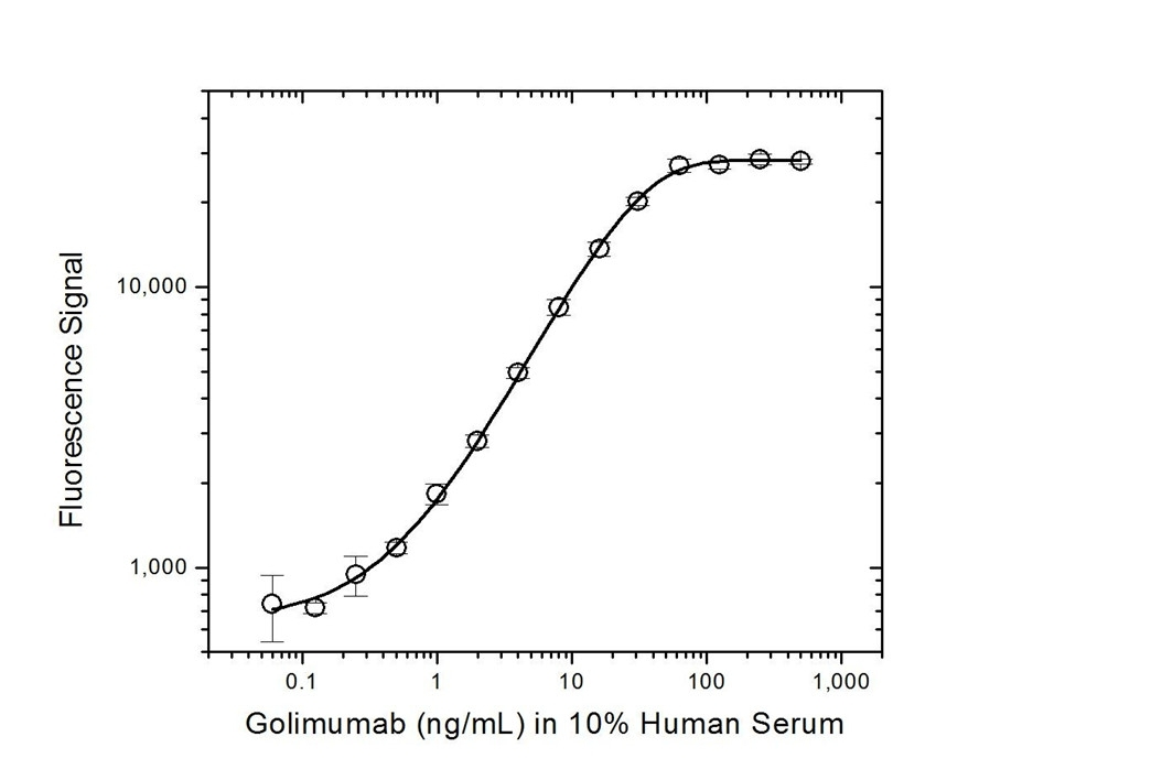 Anti Golimumab Antibody, clone AbD20897 thumbnail image 3