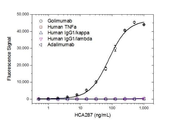 Anti Golimumab Antibody, clone AbD25418_hIgG1 thumbnail image 2