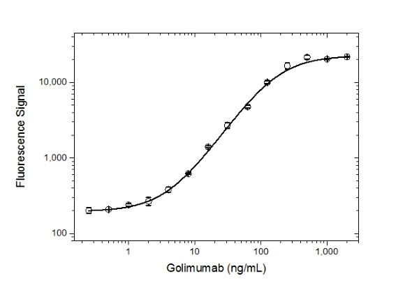 Anti Golimumab Antibody, clone AbD25418_hIgG1 thumbnail image 3