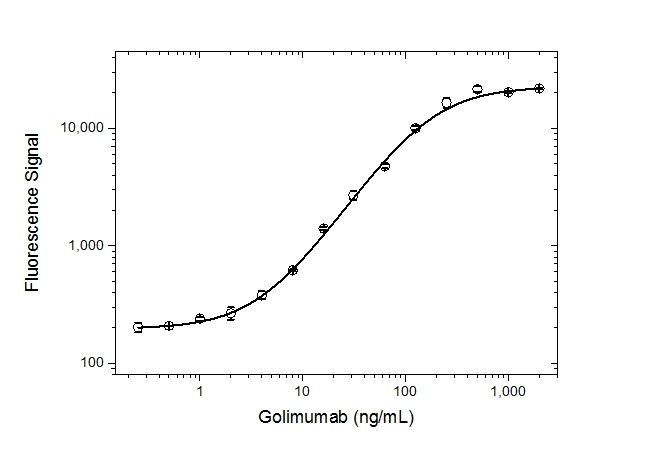 Anti Golimumab Antibody, clone AbD25429 thumbnail image 3