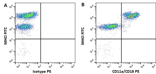 Anti Horse CD11a/CD18 Antibody, clone CVS9 thumbnail image 4