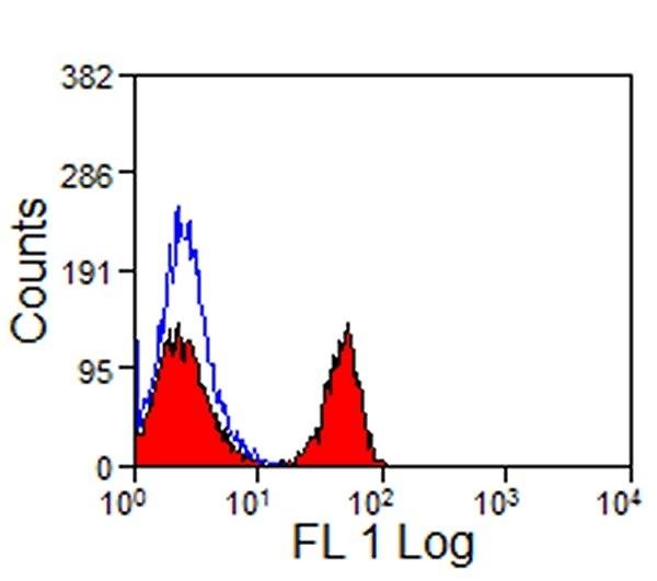 Anti Horse CD4 Antibody, clone CVS4 thumbnail image 2
