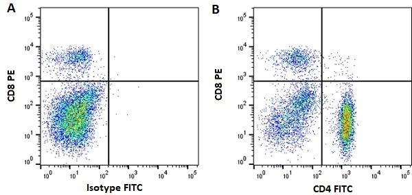Anti Horse CD4 Antibody, clone CVS4 thumbnail image 4