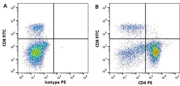 Anti Horse CD4 Antibody, clone CVS4 thumbnail image 5