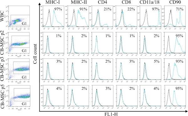Anti Horse CD4 Antibody, clone CVS4 thumbnail image 6
