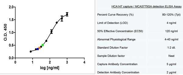 Anti Human Actin Beta Antibody, clone AbD12141 thumbnail image 5