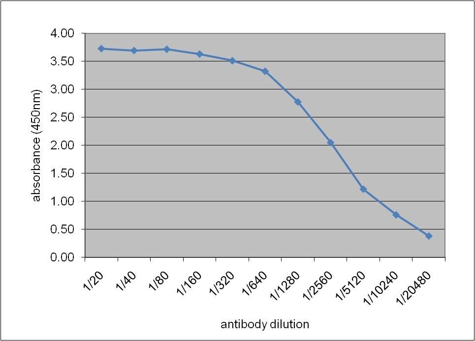 Anti Human Apolipoprotein E Antibody, clone WUE-4 thumbnail image 1