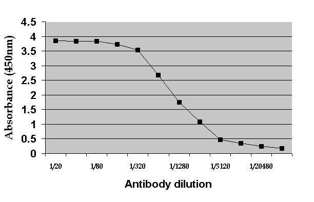 Anti c-Myc Antibody, clone 9E10 thumbnail image 1