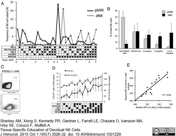 Anti c-Myc Antibody, clone 9E10 thumbnail image 3