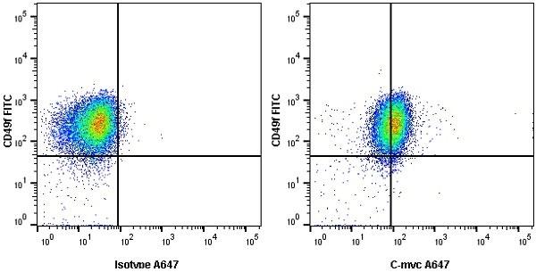 Anti c-Myc Antibody, clone 9E10 thumbnail image 5