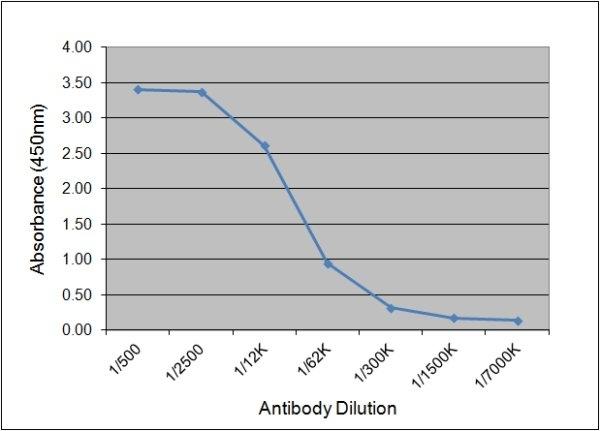 Anti Human C-Reactive Protein Antibody, clone 160.7A5 thumbnail image 1