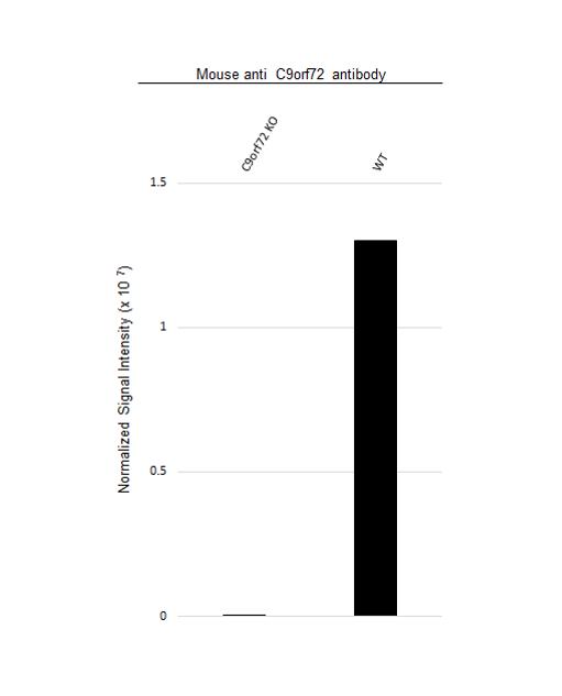 Anti C9orf72 Antibody, clone B01-5F2 (PrecisionAb Monoclonal Antibody) thumbnail image 3