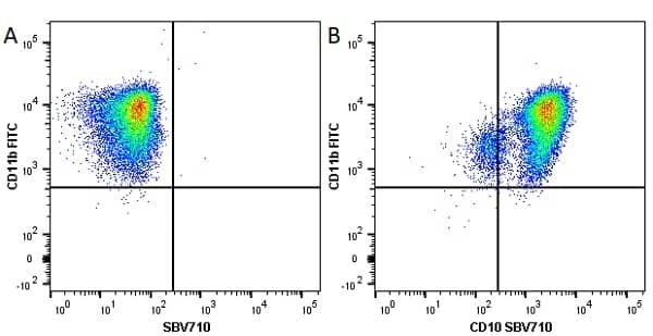 Anti Human CD10 Antibody, clone SN5c thumbnail image 7