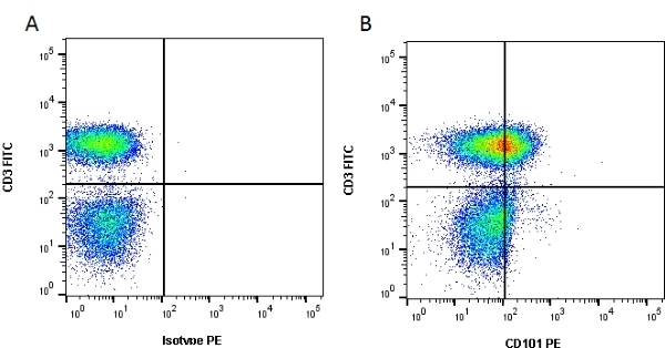 Anti Human CD101 Antibody, clone BB27 thumbnail image 2
