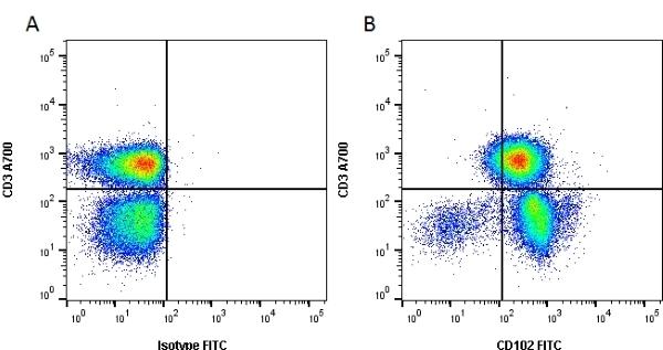 Anti Human CD102 Antibody, clone CBRIC2/2 thumbnail image 2