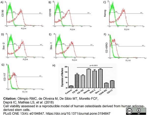 Anti Human CD105 Antibody, clone SN6 thumbnail image 17