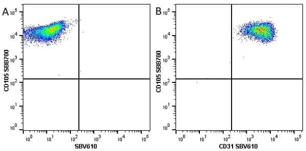 Anti Human CD105 Antibody, clone SN6 thumbnail image 31